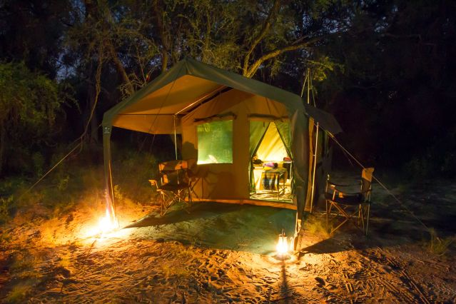 Voyage Botswana : safari authentique