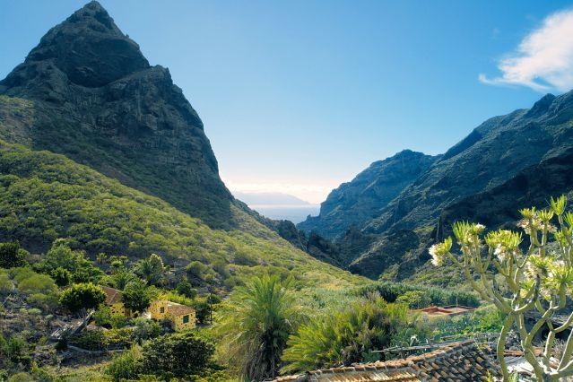 Tenerife - Canaries