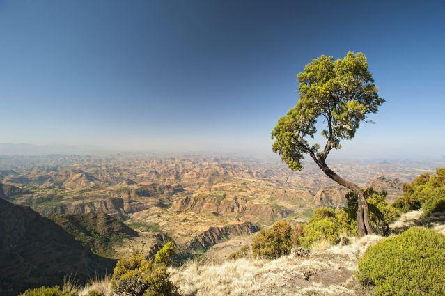 Voyage Des montagnes du Simien à Lalibela