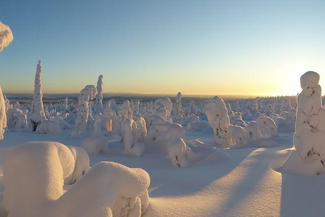 Voyage Aventure enneigée en Laponie sauvage