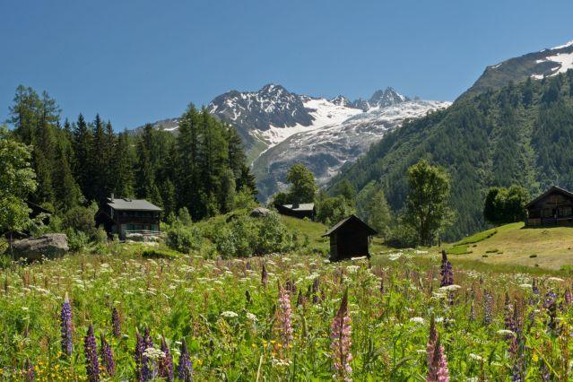 Voyage Tour du Mont-Blanc en hôtel