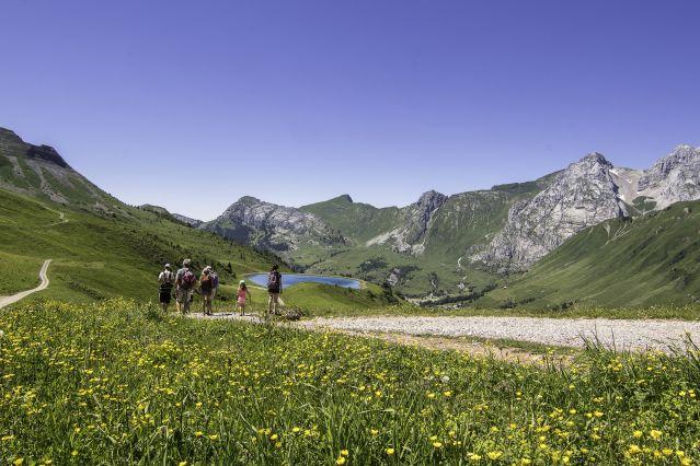 Voyage Balade avec un âne entre Léman et Mont-Blanc