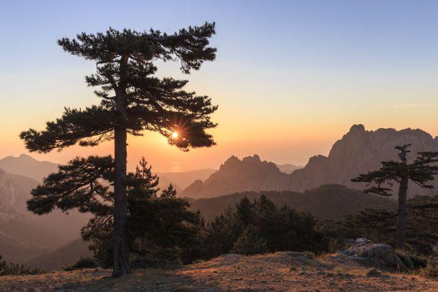 Voyage Sports et nature en Alta Rocca