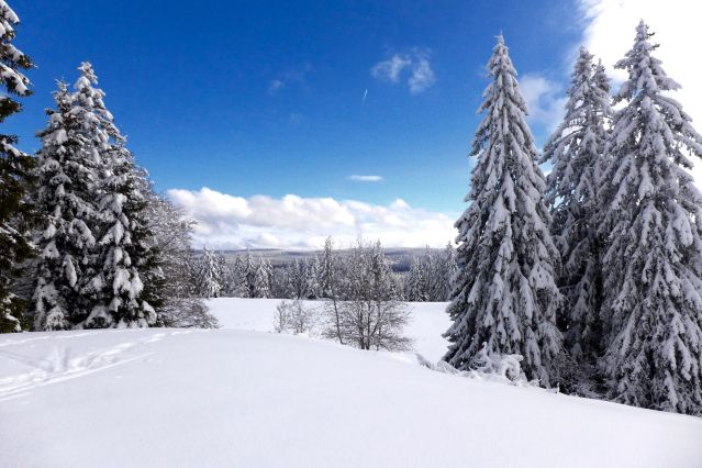 Voyage Les Hautes Combes du Jura en ski nordique