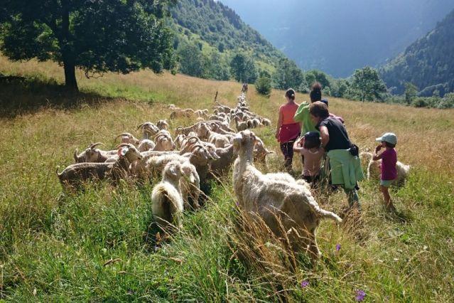 Voyage Les Pyrénées grandeur nature