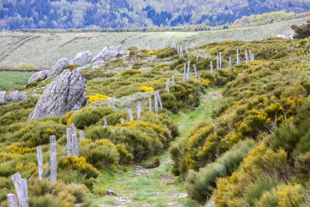 Voyage Aventures et nature en Ardèche