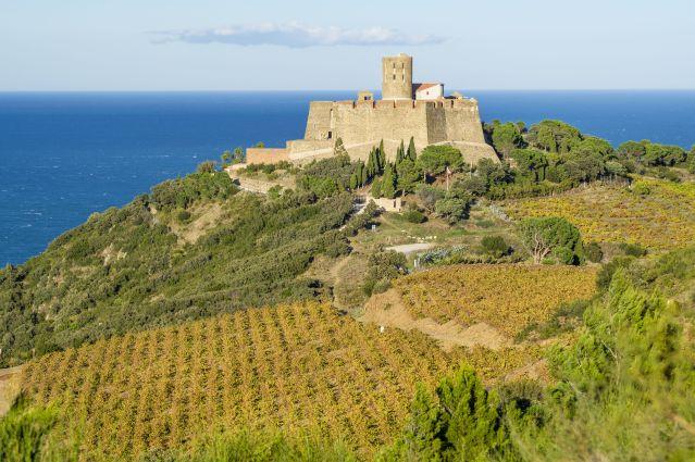 Le fort Saint-Elme sur les hauteurs de Collioure - France