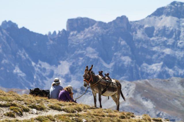 Voyage Queyras et piémonts, les Alpes du Soleil