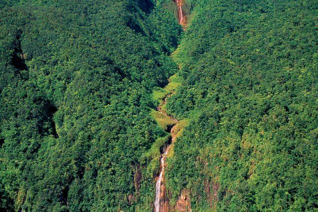 Voyage Les plus belles randonnées de l'île Papillon