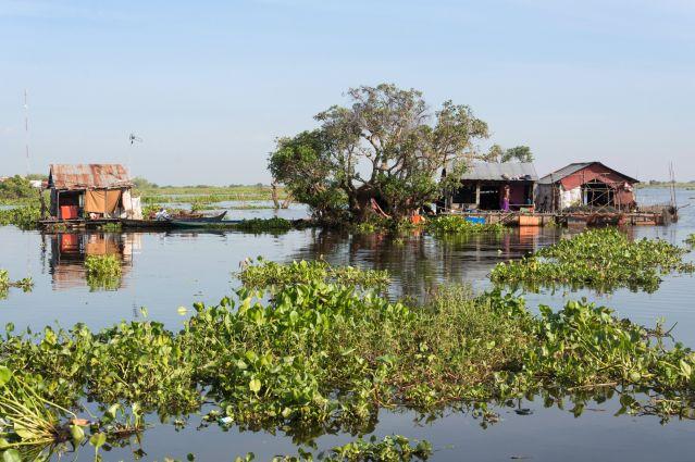 Voyage Angkor, Tonle Sap et Cardamomes