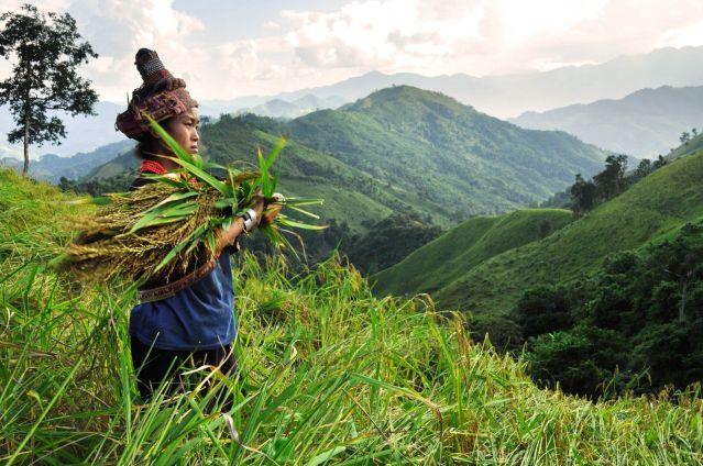 Voyage Rando et ethnies du nord Laos