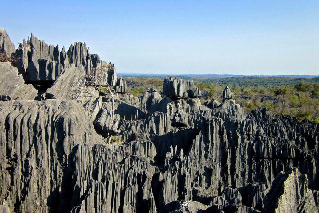 Voyage Pirogues, tsingys Bemaraha et baobabs