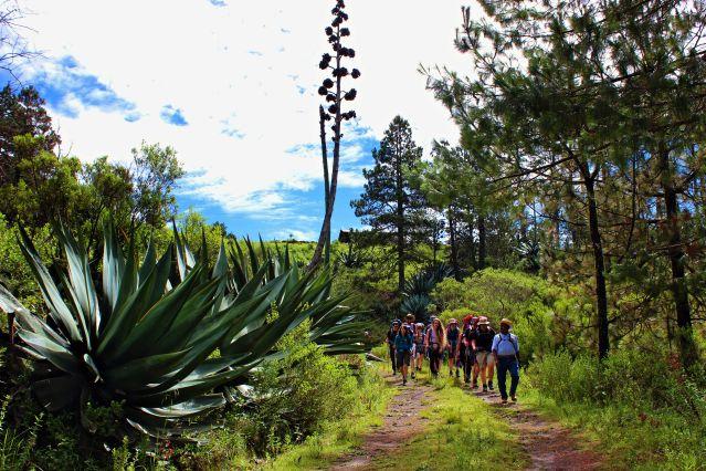 Treks des volcans à la sierra mexicaine
