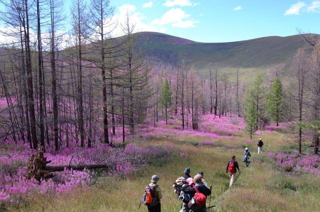 Randonnée de la vallée de l'Orkhon à l'Arkhangaï
