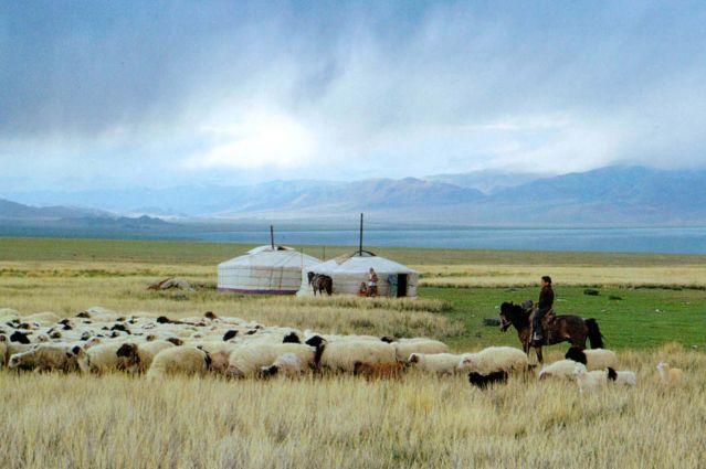 Randonnée nomade en Arkhangaï
