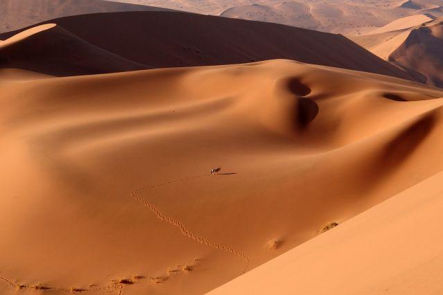 Voyage La Namibie à votre rythme