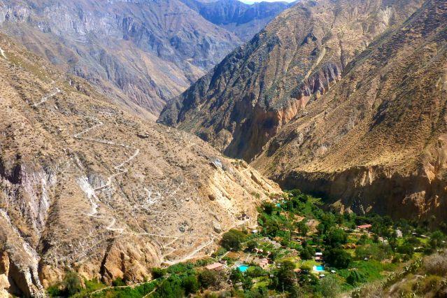 Voyage Canyon de Colca et hauts plateaux andins