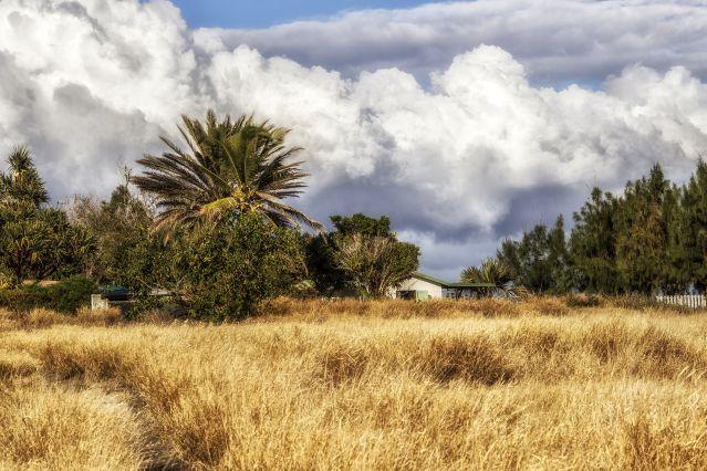 Pointe au Sel - La Réunion