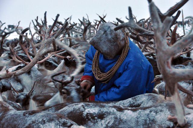 Voyage A la rencontre du peuple des Nenets