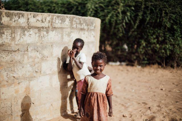 Vie sauvage dans le delta du Siné Saloum