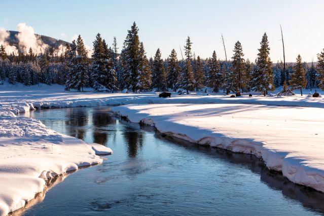 Voyage Aventures enneigées au Yellowstone