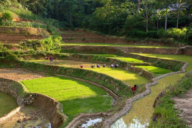 Périple en Indochine