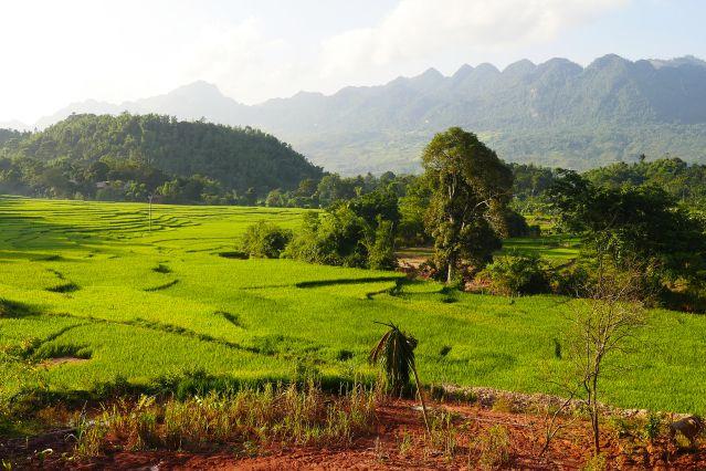 Voyage Rizières, pics karstiques et delta du Mékong