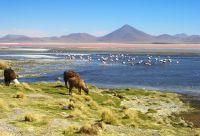 Balade bolivienne