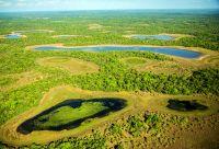 Treks cariocas et Pantanal sauvage