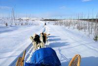 Expédition en traîneau à chiens au lac Mistassini