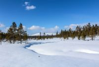 Au cœur des montagnes de Kiilopää