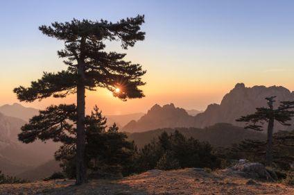 Sports et nature en Alta Rocca