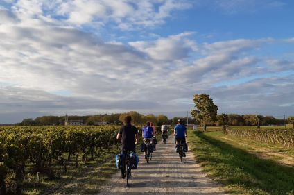 Vignobles et océan : de Bordeaux à Arcachon à vélo
