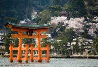 Grande découverte du Japon