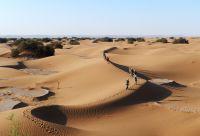 Tout au sud, le grand désert
