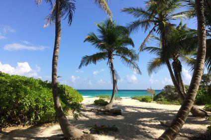 Pyramides, jungle et plages du Yucatán