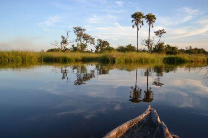 Sur les routes de Namibie et du Botswana