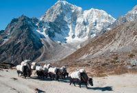L'Everest par les hauts cols
