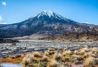 Randonnées en Pays kiwi
