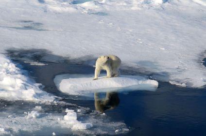 Cap sur les glaces du Spitzberg