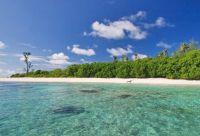 Sous les cocotiers des Seychelles