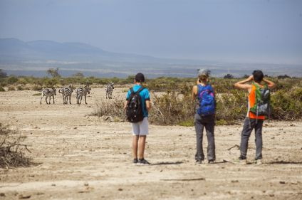 Savane, lodge et plages en Tanzanie