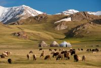 Sentiers nomades et coupoles turquoise